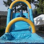 dolphin water slide2